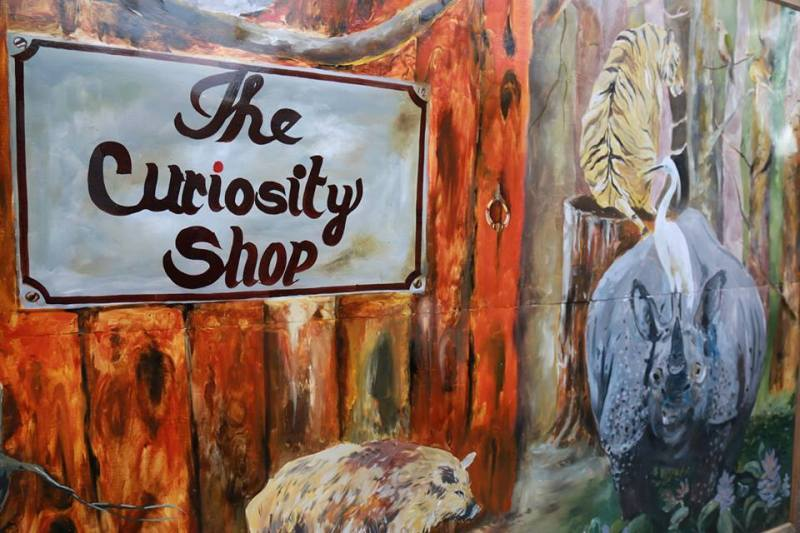 The Curiosity Shop Movie